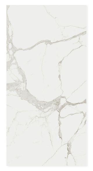 Marble Statuario